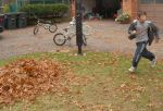 raking leaves caleb 1