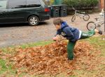 raking leaves izzy 2