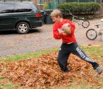 raking leaves j fb 2