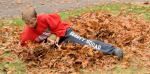raking leaves j fb 3